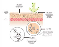 Nubo science illustration diagram